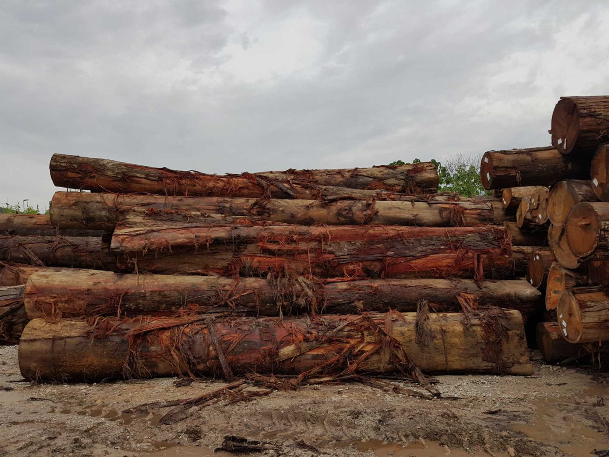 Dark Red Meranti Sawn Lumber Petal