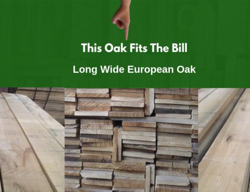 Long Wide European Oak